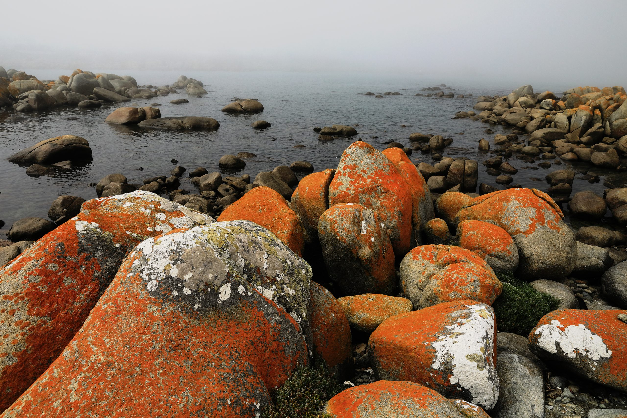 Colorful rocky bay covered in mist